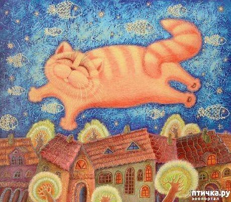 фото 4: Котоматрица: Теплые коты!
