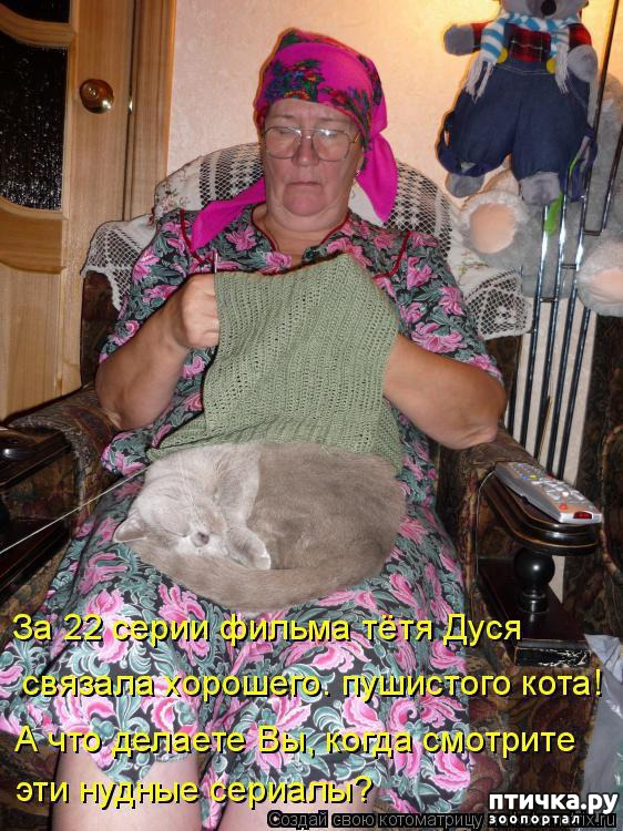 фото 9: Котоматрица: Теплые коты!