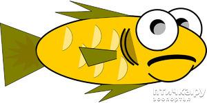 фото: Прожорливая рыбка