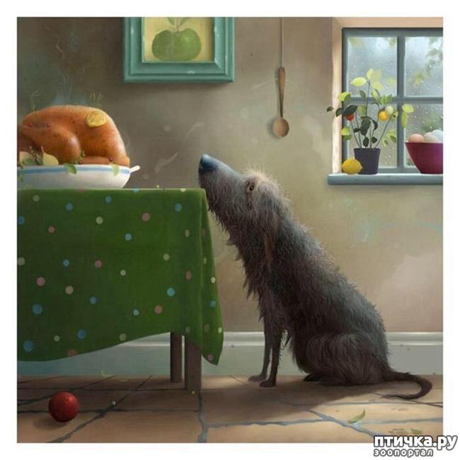 фото 3: И снова о собаках в живописи