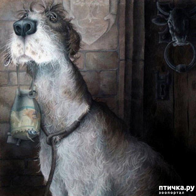 фото 4: И снова о собаках в живописи