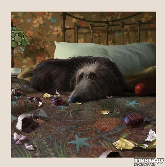 фото 1: И снова о собаках в живописи