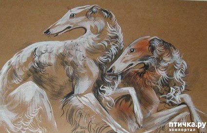 фото 9: И снова о собаках в живописи