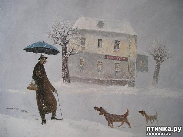фото 23: И снова о собаках в живописи
