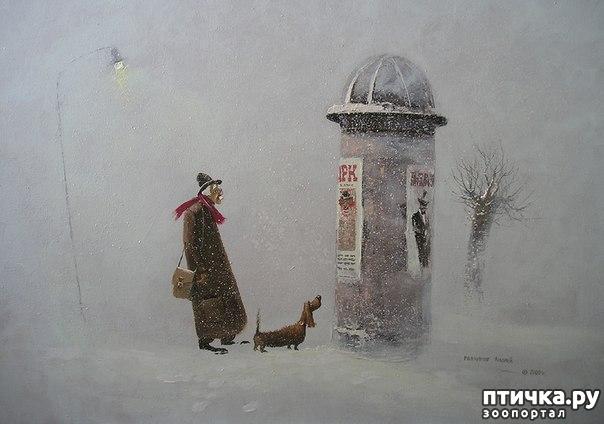 фото 24: И снова о собаках в живописи