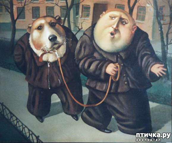 фото 26: И снова о собаках в живописи