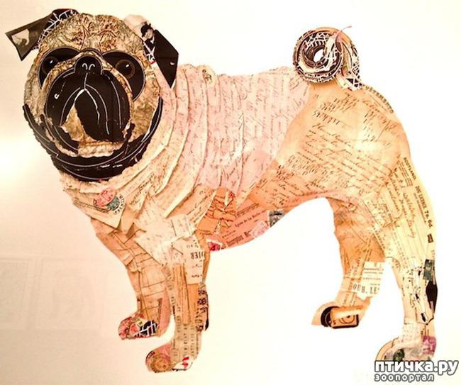 фото 27: И снова о собаках в живописи