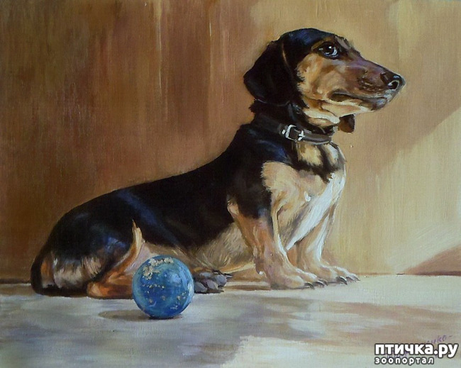 фото 33: И снова о собаках в живописи
