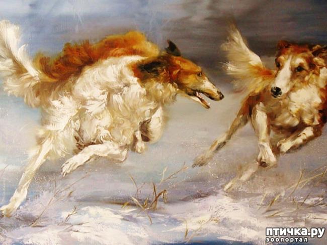 фото 34: И снова о собаках в живописи