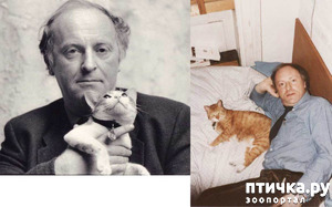 фото: Знаменитости и кошки