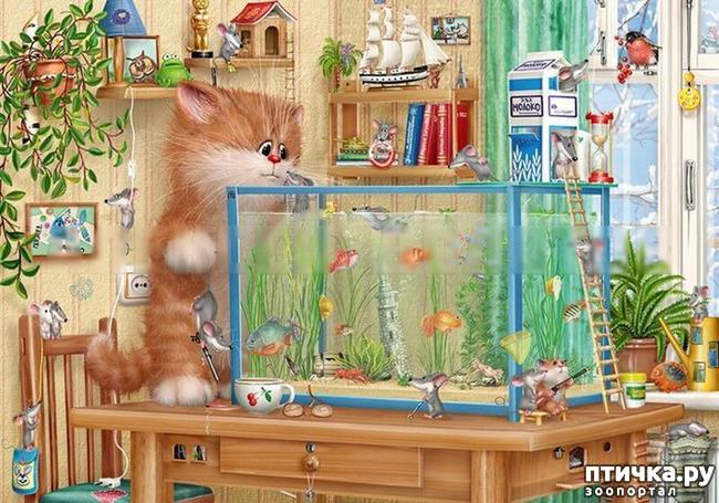 фото 6: Художник Алексей Долотов. Жил забавный рыжий кот…