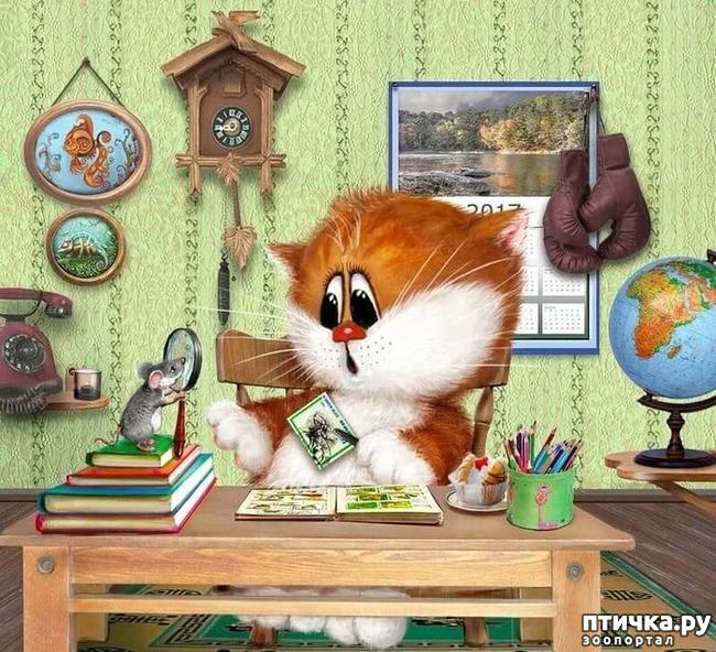 фото 8: Художник Алексей Долотов. Жил забавный рыжий кот…
