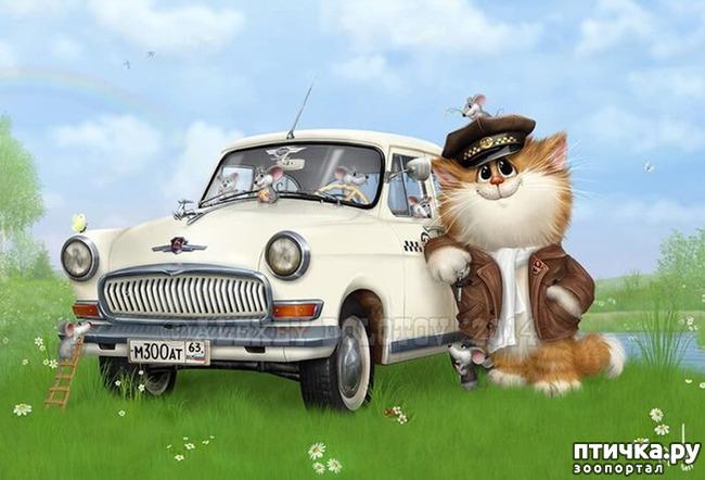 фото 12: Художник Алексей Долотов. Жил забавный рыжий кот…
