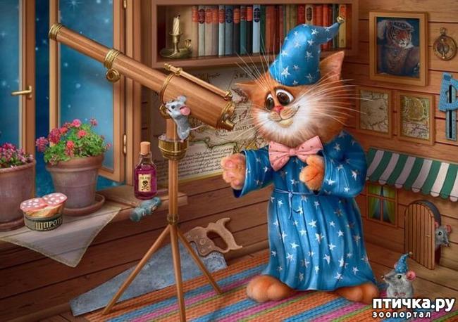 фото 14: Художник Алексей Долотов. Жил забавный рыжий кот…