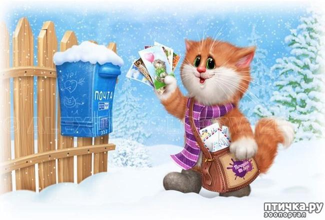 фото 17: Художник Алексей Долотов. Жил забавный рыжий кот…