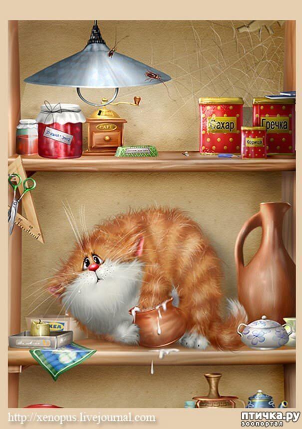 фото 20: Художник Алексей Долотов. Жил забавный рыжий кот…