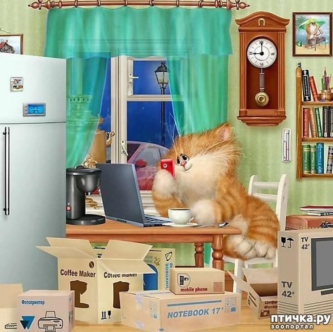 фото 22: Художник Алексей Долотов. Жил забавный рыжий кот…