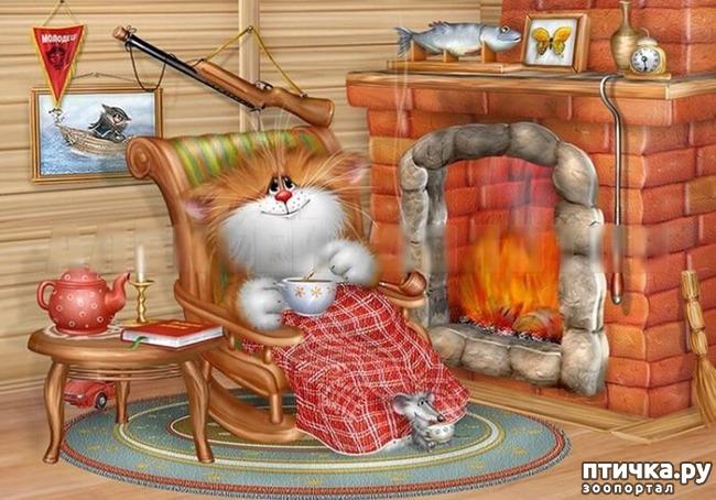 фото 25: Художник Алексей Долотов. Жил забавный рыжий кот…