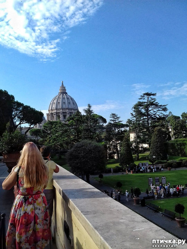 фото 4: Ватикан