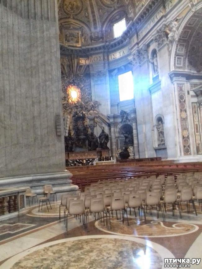 фото 12: Ватикан