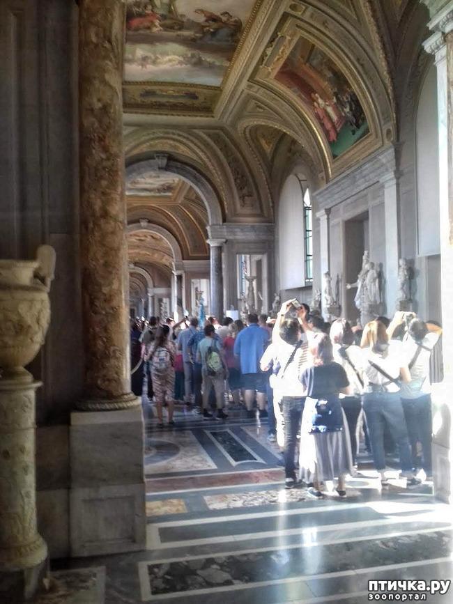 фото 13: Ватикан
