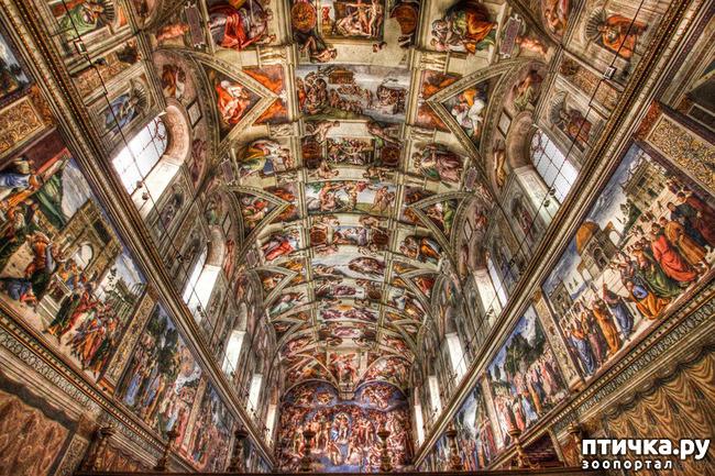 фото 22: Ватикан