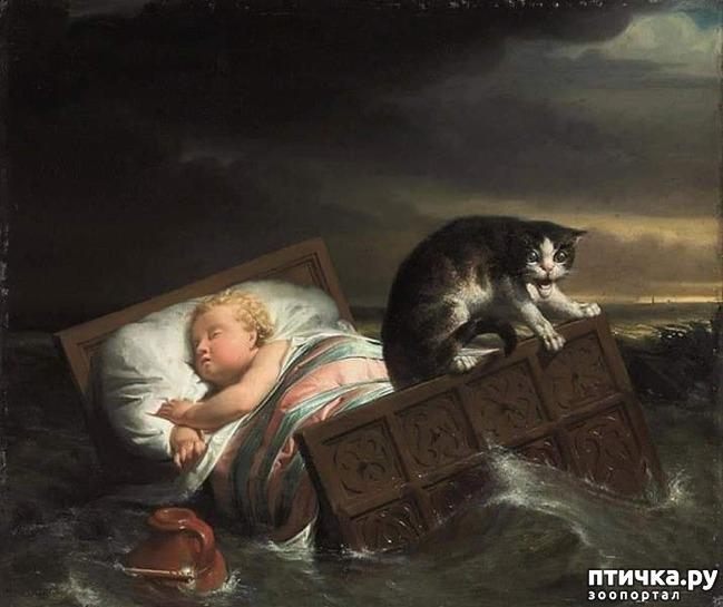 фото 1: Наводнение в Бисбосе