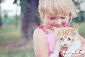 фото: Дети и животные. Часть четвертая. Завели - что делать дальше.