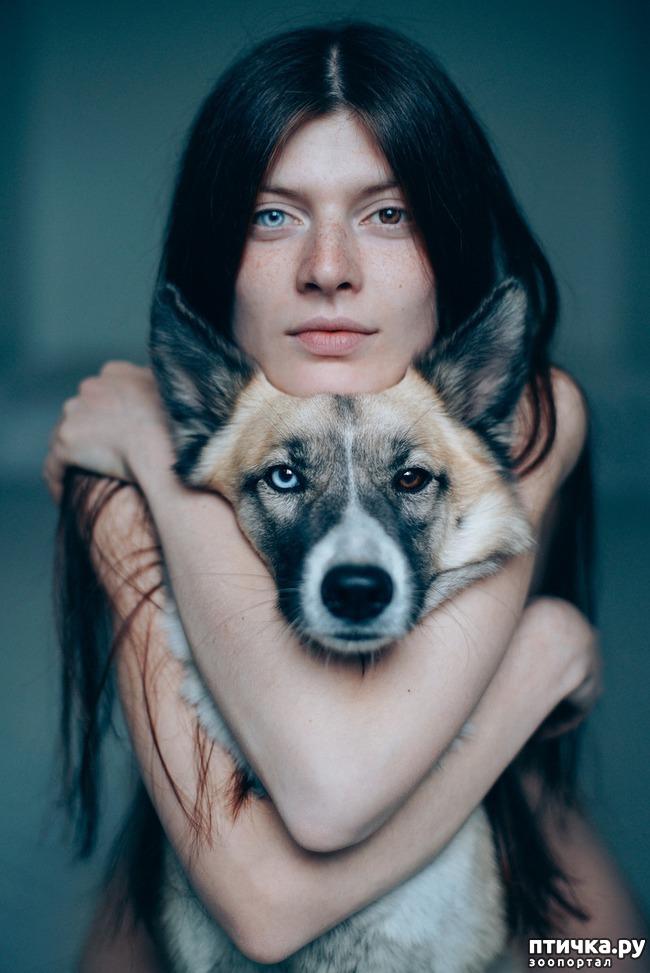 фото 10: Гетерохромия: каково жить с разными глазами.