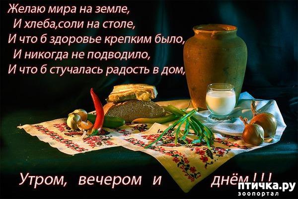 фото 4: С новым годом! Пожелания)