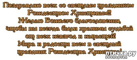 фото 3: С ПРИБЛИЖАЮЩИМСЯ РОЖДЕСТВОМ ХРИСТОВЫМ!