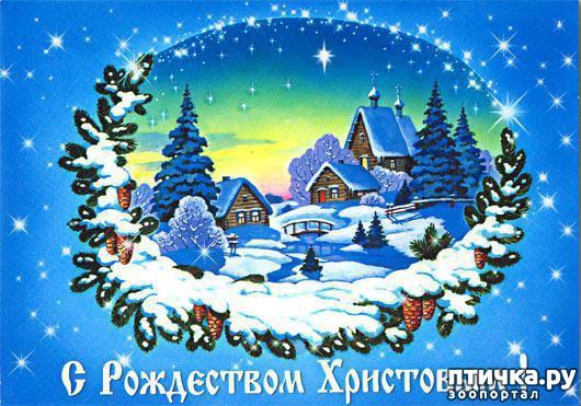 фото 4: С наступающим Рождеством!