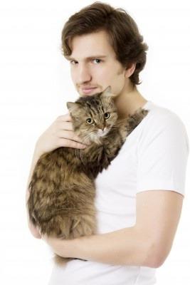 фото 3: Кого наши кошки и коты выбирают себе в любимчики?