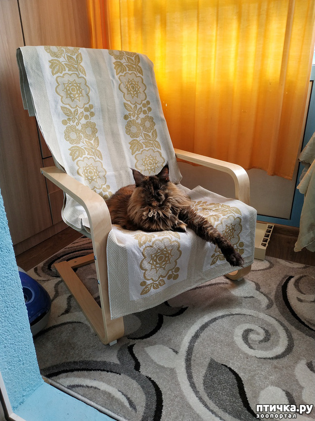 фото 1: Кресло