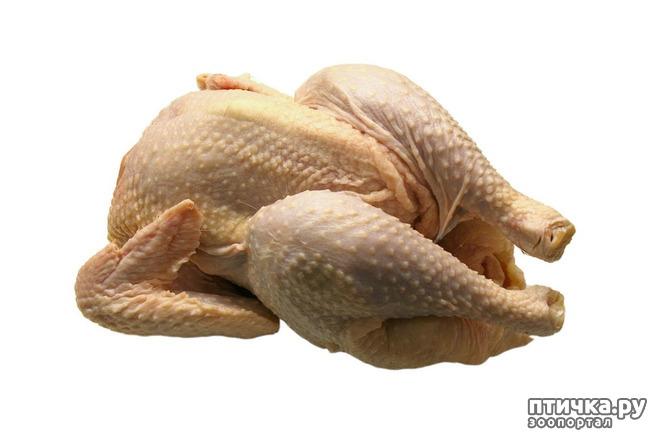 фото 4: Учимся читать состав: а было ли мясо в сухих кормах?