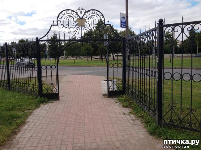 фото 9: Прогулка по Брестскому парку.