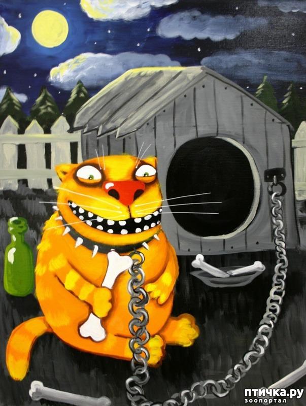 фото 1: Вася Ложкин и его коты