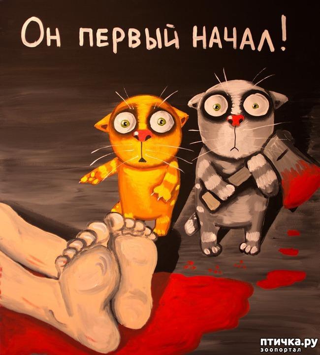 фото 4: Вася Ложкин и его коты