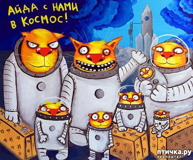 фото 8: Вася Ложкин и его коты