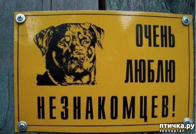 фото 4: Табличка на забор