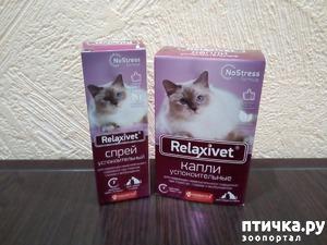 фото: Успокоительные капли и спрей для кошек.