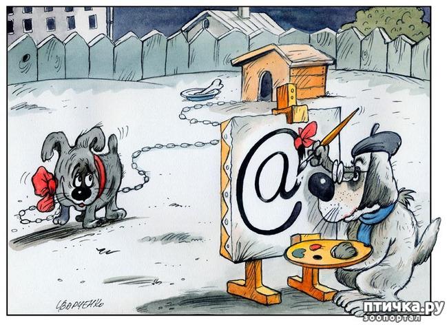 фото 4: В догонку к рисункам с синими котами. Карикатурные рисунки с собачками