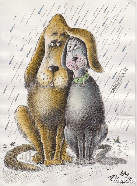 фото 13: В догонку к рисункам с синими котами. Карикатурные рисунки с собачками