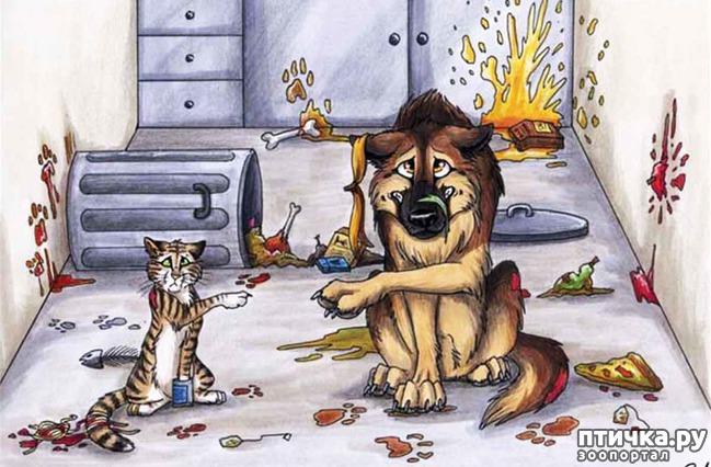 фото 16: В догонку к рисункам с синими котами. Карикатурные рисунки с собачками