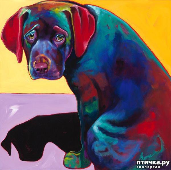 фото 3: Собаки в современной живописи