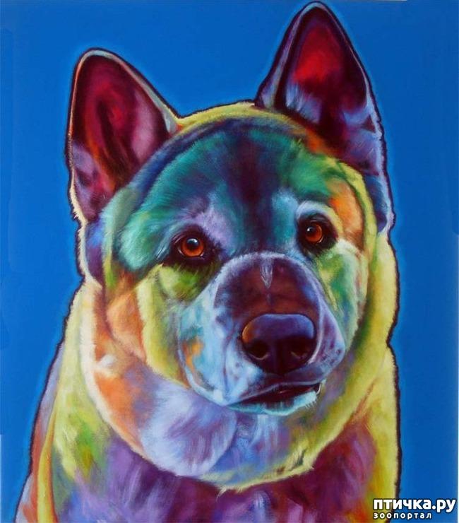 фото 2: Собаки в современной живописи