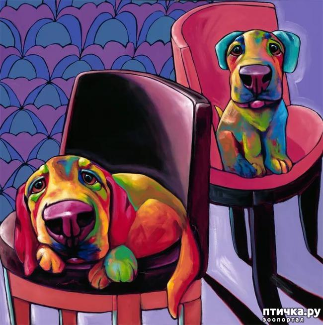 фото 5: Собаки в современной живописи