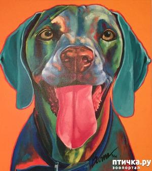 фото: Собаки в современной живописи