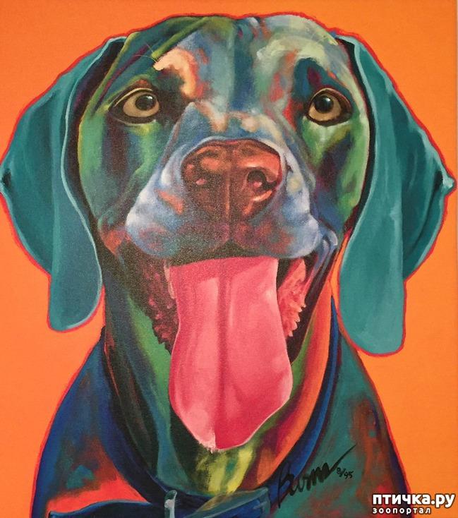 фото 1: Собаки в современной живописи