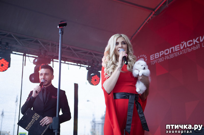фото 1: Праздничный концерт в честь Дня Победы провел необычный ведущий